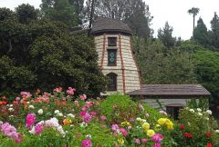 Exterior of the Windmill Chapel taken from the Courtyard showing roses